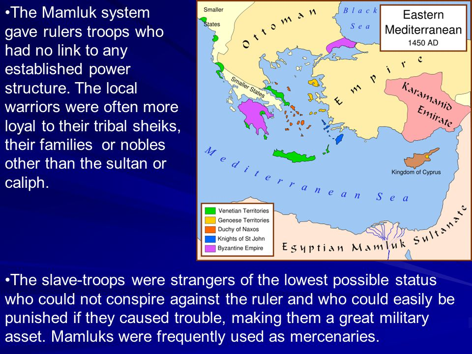 The Mamluk system gave rulers troops who had no link to any established power structure. The local warriors were often more loyal to their tribal shei
