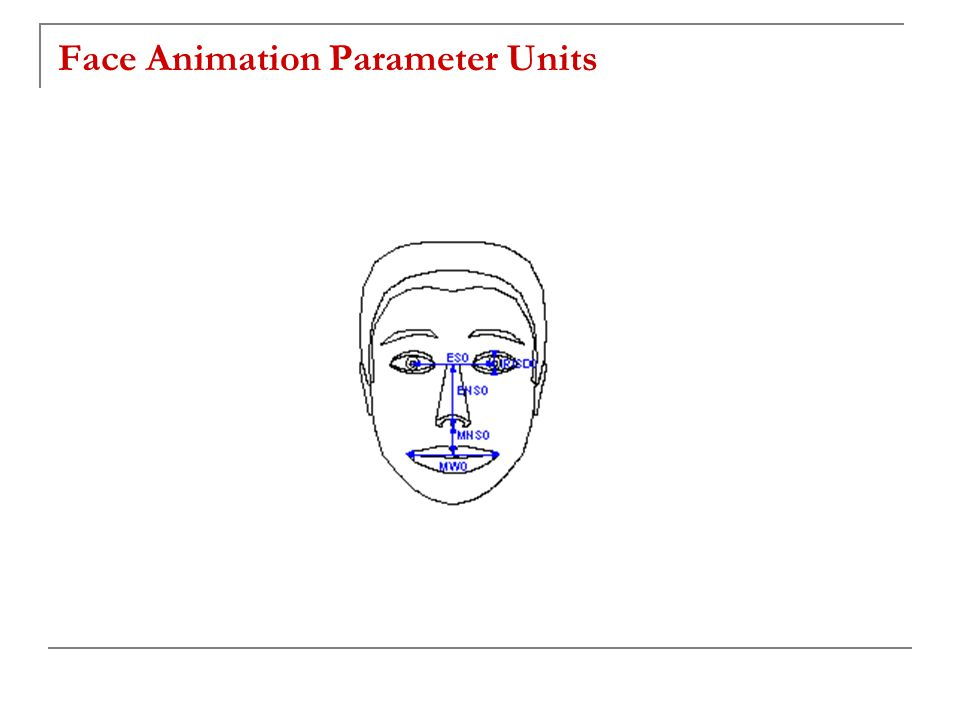 Face Animation Parameter Units