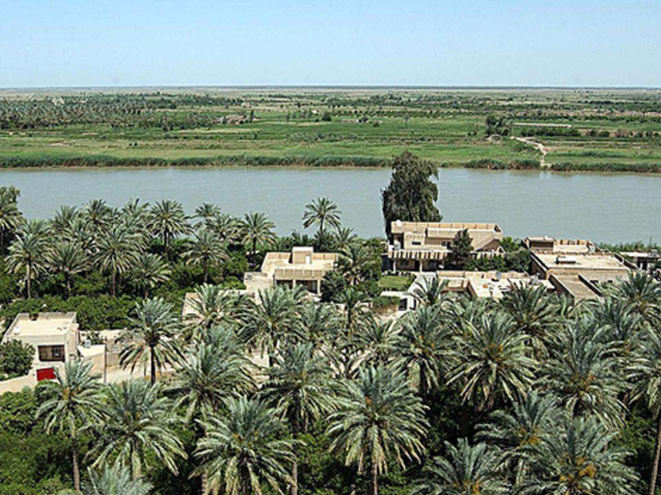 B.Mesopotamia *land bt. the rivers (Greek) Birth of Civilization 5000 BC C.