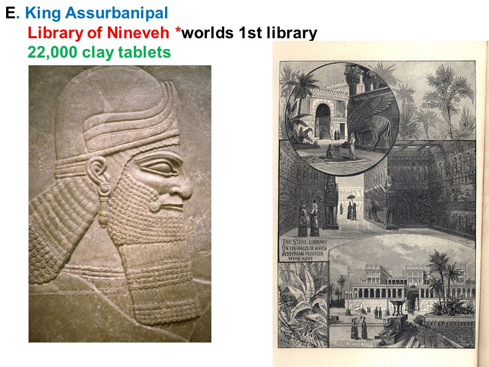 E. King Assurbanipal Library of Nineveh *worlds 1st library 22,000 clay tablets