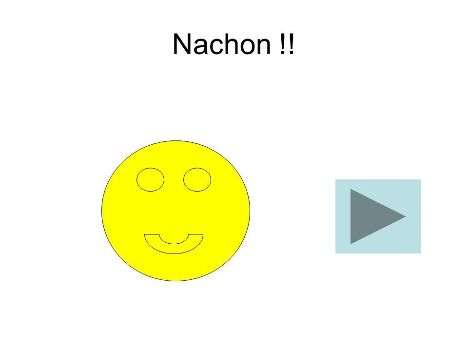Lo Nachon