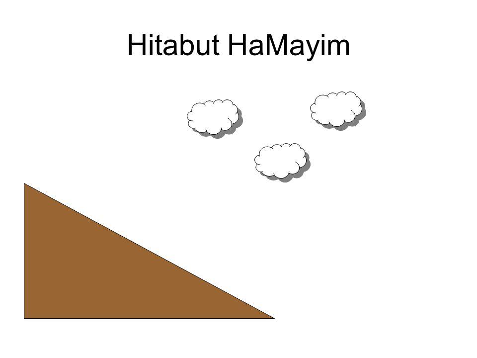 Hitadut HaMayim