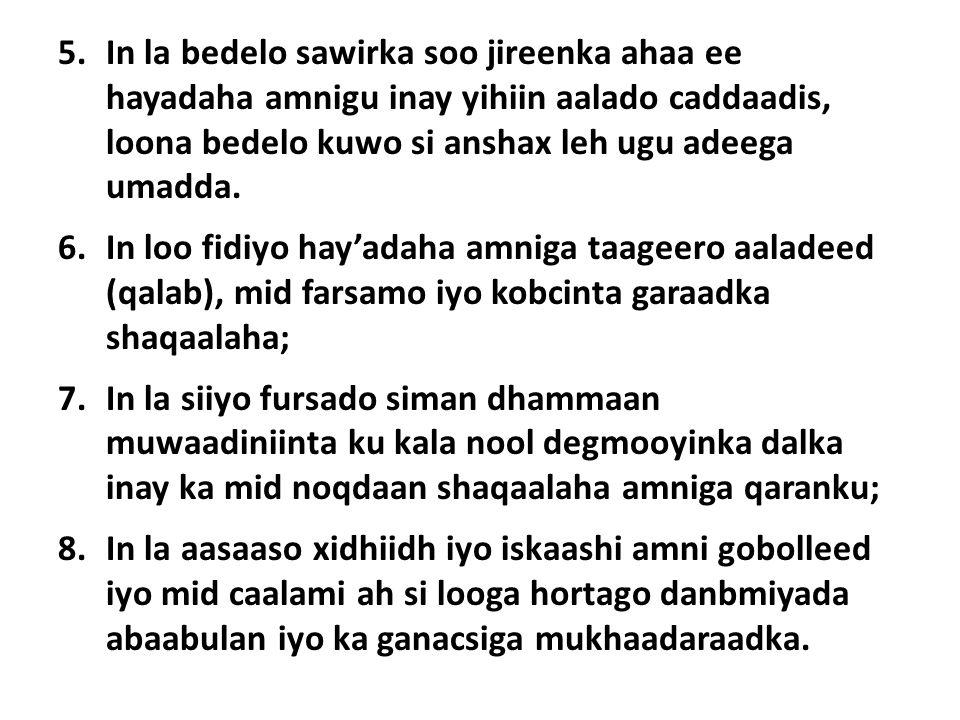 5.In la bedelo sawirka soo jireenka ahaa ee hayadaha amnigu inay yihiin aalado caddaadis, loona bedelo kuwo si anshax leh ugu adeega umadda.