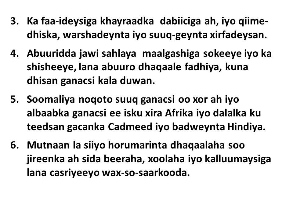 3.Ka faa-ideysiga khayraadka dabiiciga ah, iyo qiime- dhiska, warshadeynta iyo suuq-geynta xirfadeysan.