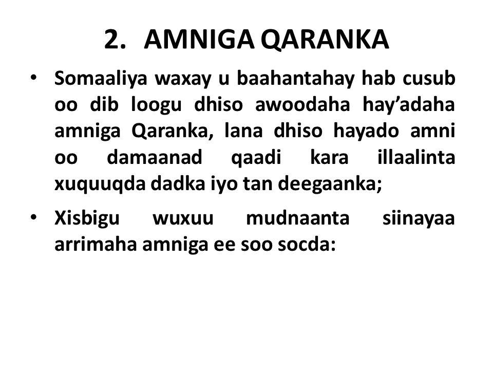 2.AMNIGA QARANKA Somaaliya waxay u baahantahay hab cusub oo dib loogu dhiso awoodaha hay'adaha amniga Qaranka, lana dhiso hayado amni oo damaanad qaadi kara illaalinta xuquuqda dadka iyo tan deegaanka; Xisbigu wuxuu mudnaanta siinayaa arrimaha amniga ee soo socda: