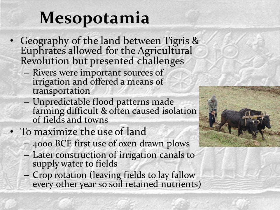 Mesopotamia Geography of the land between Tigris & Euphrates allowed for the Agricultural Revolution but presented challenges – Rivers were important sources of irrigation and offered a means of transportation – Unpredictable flood patterns made farming difficult & often caused isolation of fields and towns To maximize the use of land – 4000 BCE first use of oxen drawn plows – Later construction of irrigation canals to supply water to fields – Crop rotation (leaving fields to lay fallow every other year so soil retained nutrients)