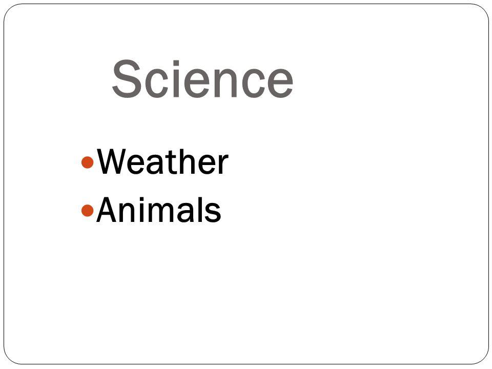 Weather Animals