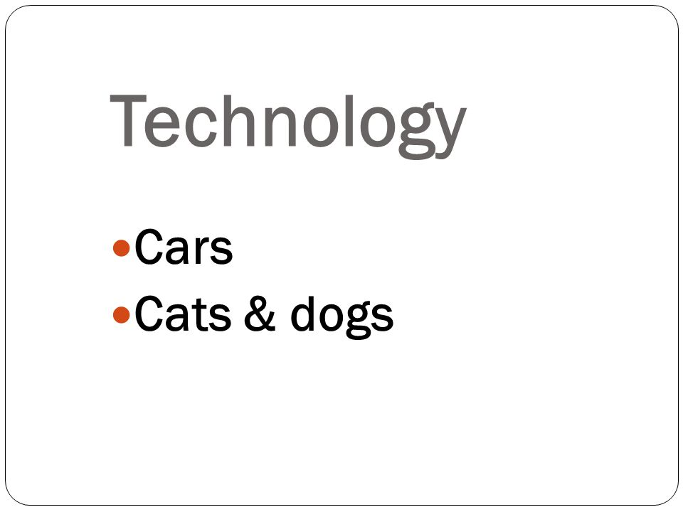 Cars Cats & dogs