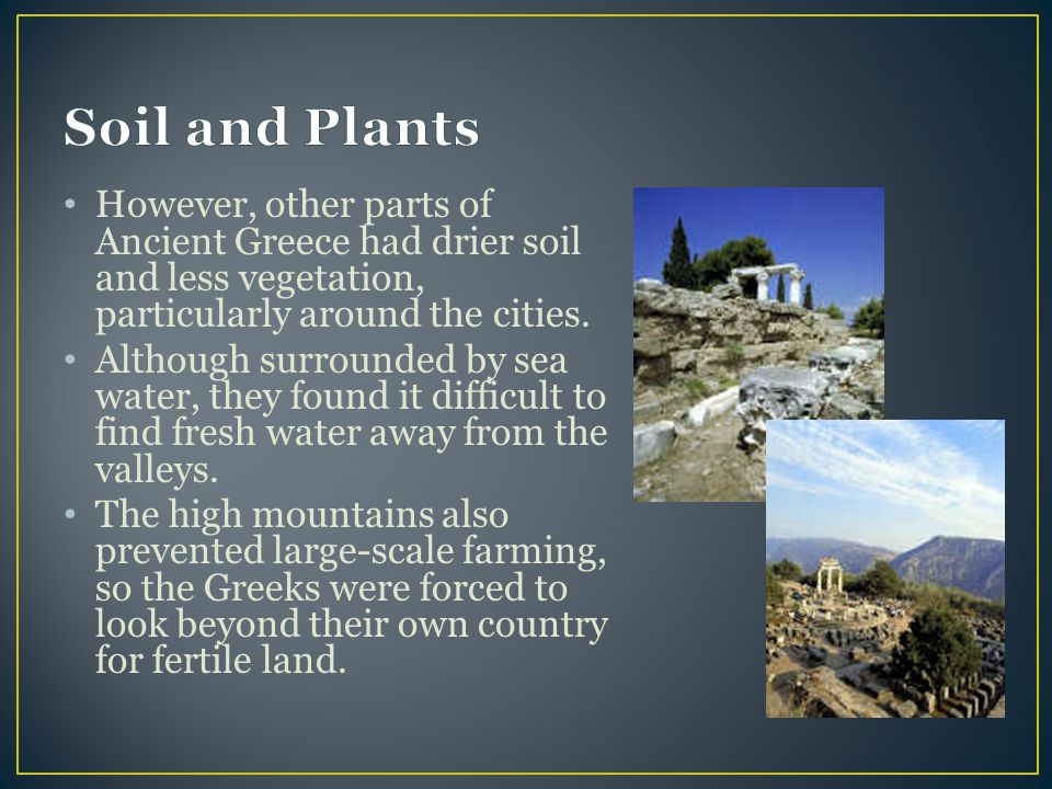 However, other parts of Ancient Greece had drier soil and less vegetation, particularly around the cities.