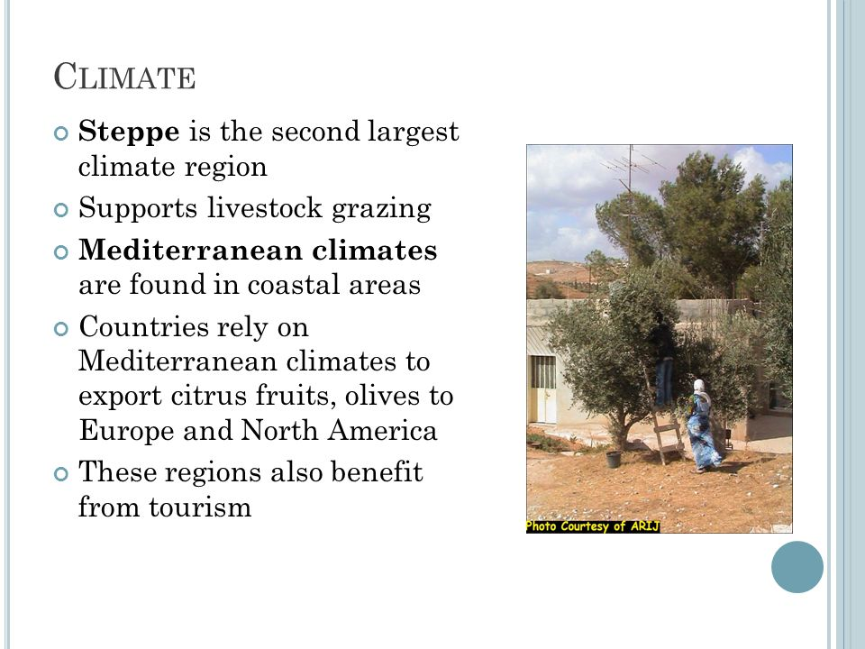 C LIMATE Steppe is the second largest climate region Supports livestock grazing Mediterranean climates are found in coastal areas Countries rely on Mediterranean climates to export citrus fruits, olives to Europe and North America These regions also benefit from tourism