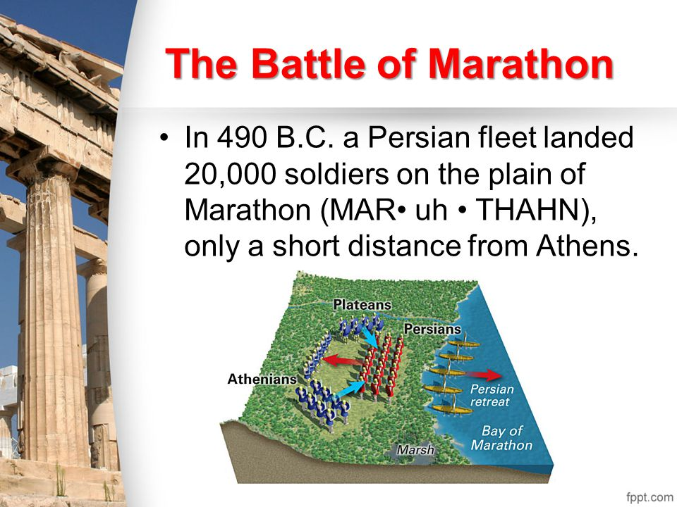 The Spartans in the Greek army were especially brave.