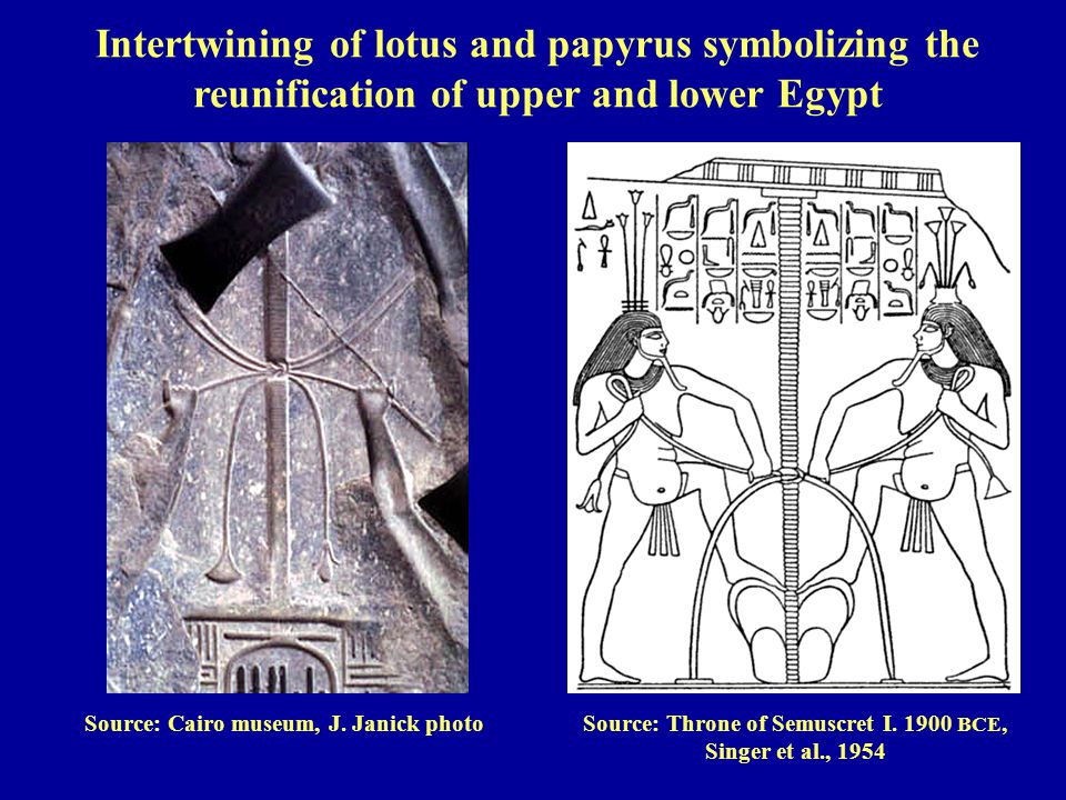 Source: Cairo museum, J. Janick photoSource: Throne of Semuscret I. 1900 BCE, Singer et al., 1954 Intertwining of lotus and papyrus symbolizing the re