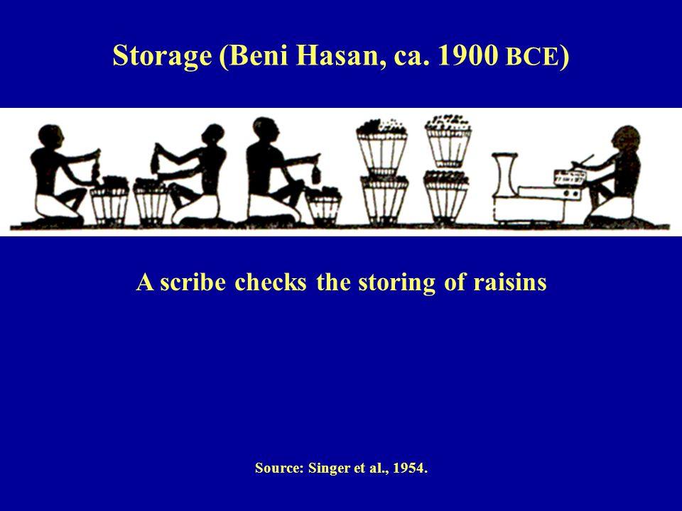 A scribe checks the storing of raisins Source: Singer et al., 1954.