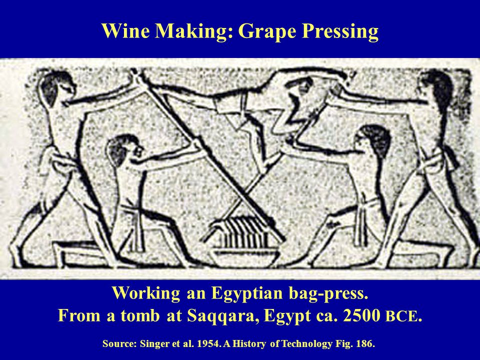 Working an Egyptian bag-press.From a tomb at Saqqara, Egypt ca.
