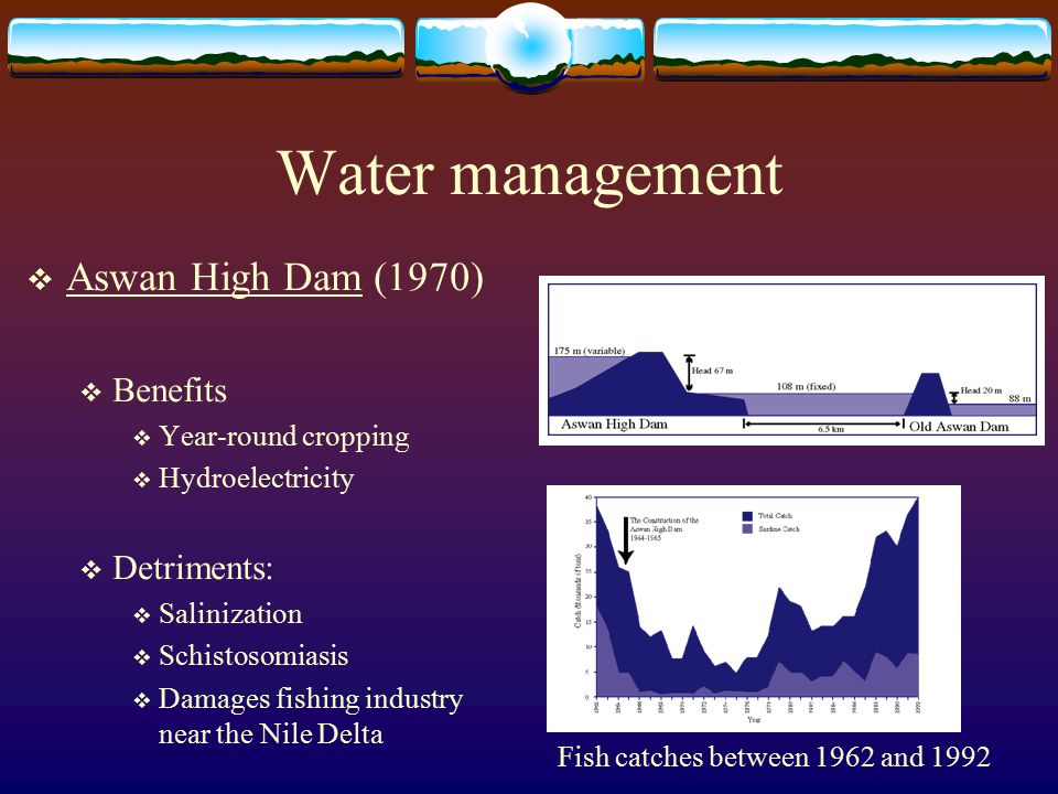 Water management  Aswan High Dam (1970)  Benefits  Year-round cropping  Hydroelectricity  Detriments:  Salinization  Schistosomiasis  Damages fishing industry near the Nile Delta Fish catches between 1962 and 1992