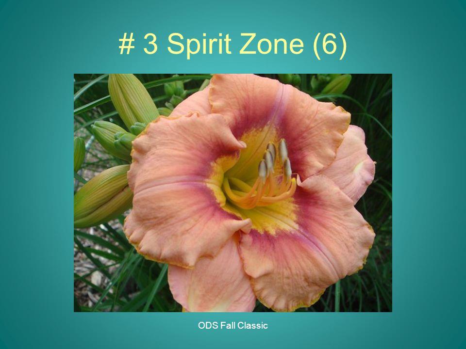 ODS Fall Classic # 3 Spirit Zone (6)
