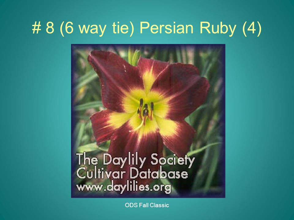 ODS Fall Classic # 8 (6 way tie) Persian Ruby (4)