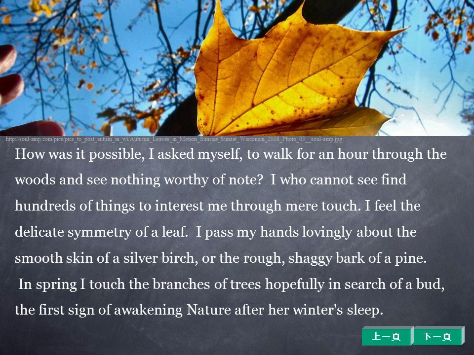 How was it possible, I asked myself, to walk for an hour through the woods and see nothing worthy of note? I who cannot see find hundreds of things to