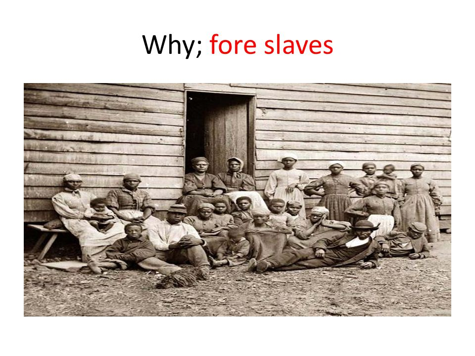 Why; fore slaves