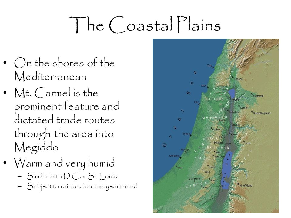 The Coastal Plains On the shores of the Mediterranean Mt. Carmel is the prominent feature and dictated trade routes through the area into Megiddo Warm