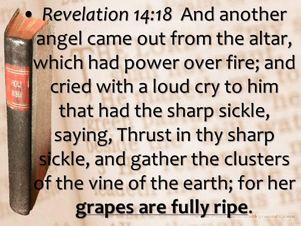 Revelation 14:18 And another angel came out from the altar, which had power over fire; and cried with a loud cry to him that had the sharp sickle, saying, Thrust in thy sharp sickle, and gather the clusters of the vine of the earth; for her grapes are fully ripe.Revelation 14:18 And another angel came out from the altar, which had power over fire; and cried with a loud cry to him that had the sharp sickle, saying, Thrust in thy sharp sickle, and gather the clusters of the vine of the earth; for her grapes are fully ripe.
