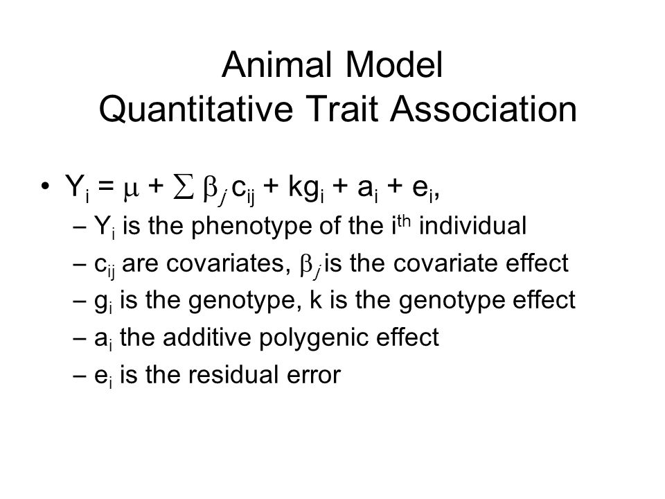 Animal Model Quantitative Trait Association Y i =  +   j c ij + kg i + a i + e i, –Y i is the phenotype of the i th individual –c ij are covariates,  j is the covariate effect –g i is the genotype, k is the genotype effect –a i the additive polygenic effect –e i is the residual error
