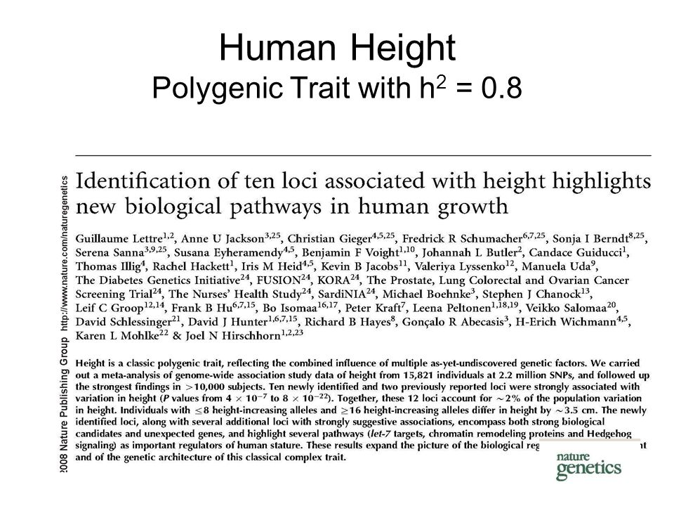 Human Height Polygenic Trait with h 2 = 0.8
