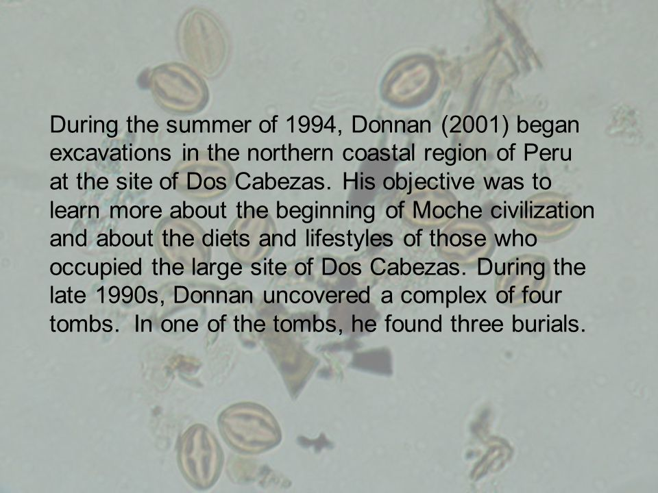 During the summer of 1994, Donnan (2001) began excavations in the northern coastal region of Peru at the site of Dos Cabezas.