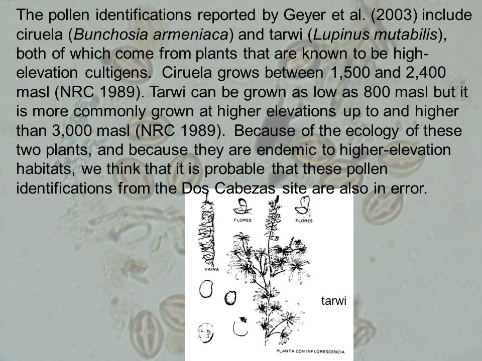 The pollen identifications reported by Geyer et al. (2003) include ciruela (Bunchosia armeniaca) and tarwi (Lupinus mutabilis), both of which come fro