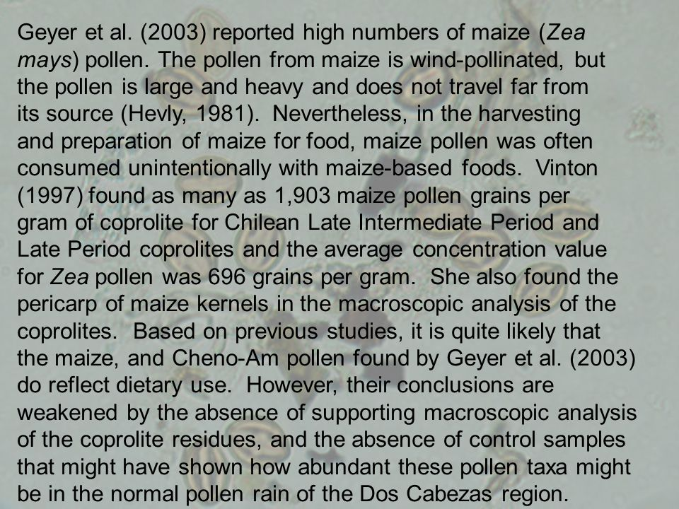 Geyer et al. (2003) reported high numbers of maize (Zea mays) pollen. The pollen from maize is wind-pollinated, but the pollen is large and heavy and