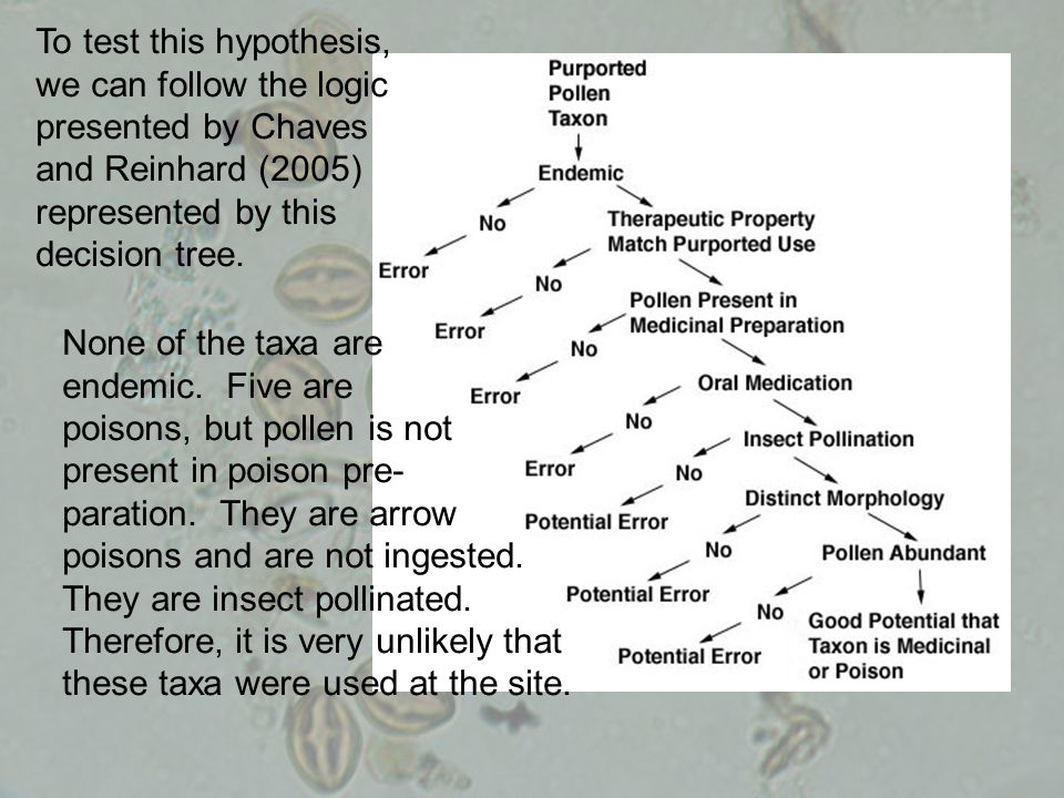 To test this hypothesis, we can follow the logic presented by Chaves and Reinhard (2005) represented by this decision tree. None of the taxa are endem
