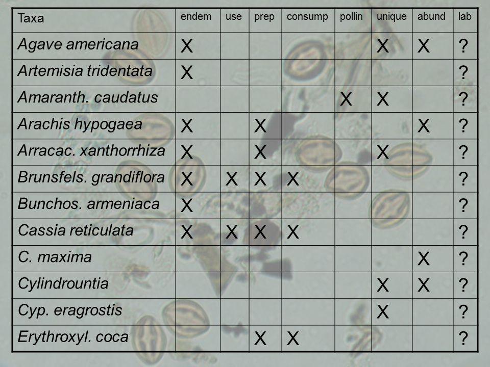 Taxa endemuseprepconsumppollinuniqueabundlab Agave americana XXX.
