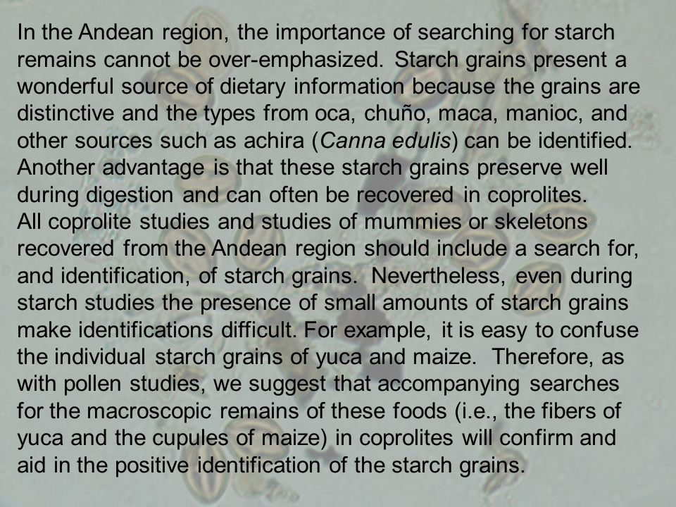 In the Andean region, the importance of searching for starch remains cannot be over-emphasized.