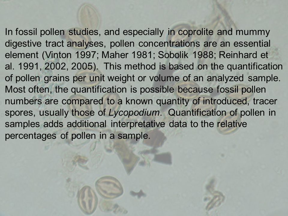 In fossil pollen studies, and especially in coprolite and mummy digestive tract analyses, pollen concentrations are an essential element (Vinton 1997;