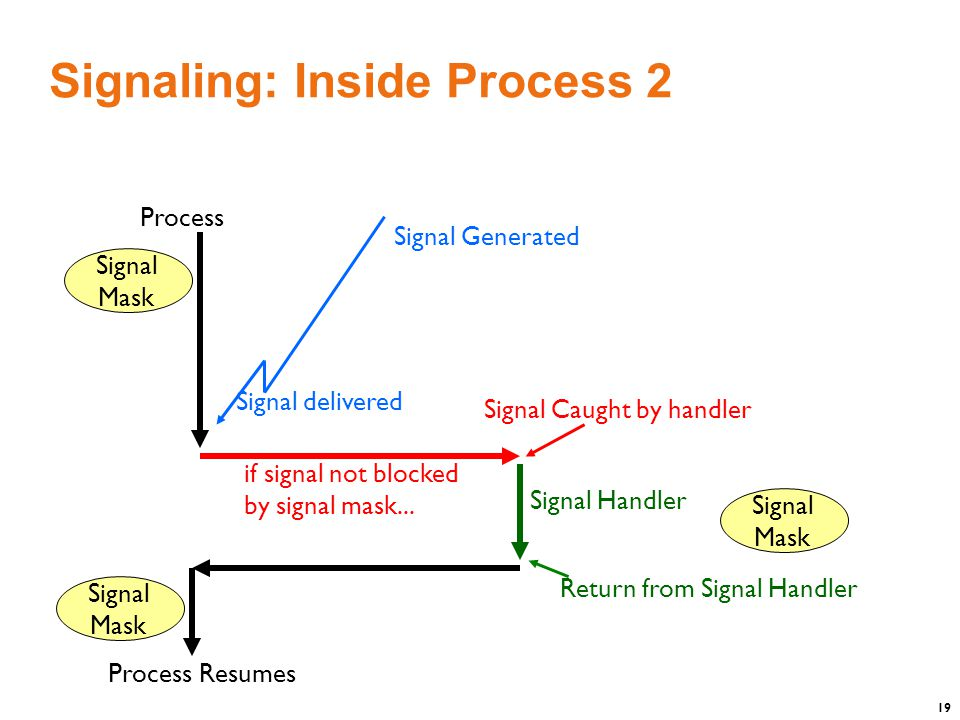 19 Signaling: Inside Process 2 Signal Generated Process Signal delivered if signal not blocked by signal mask...