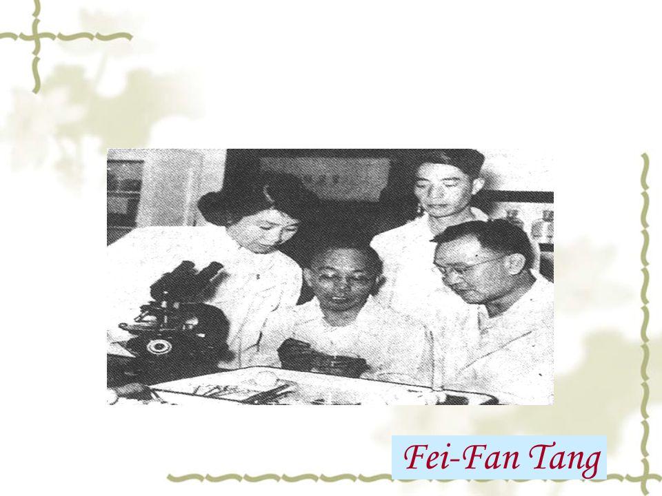 Fei-Fan Tang