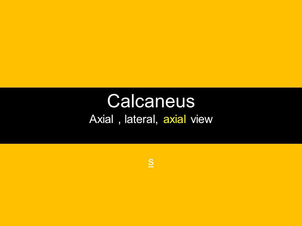 Calcaneus Axial, lateral, axial view s