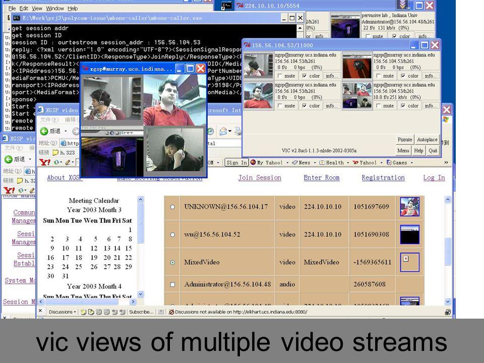 Grid Summer School: Grid Portals 160 Polycom view of multiple video streams
