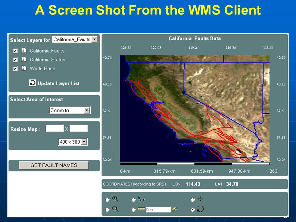 17 A Screen Shot From the WMS Client