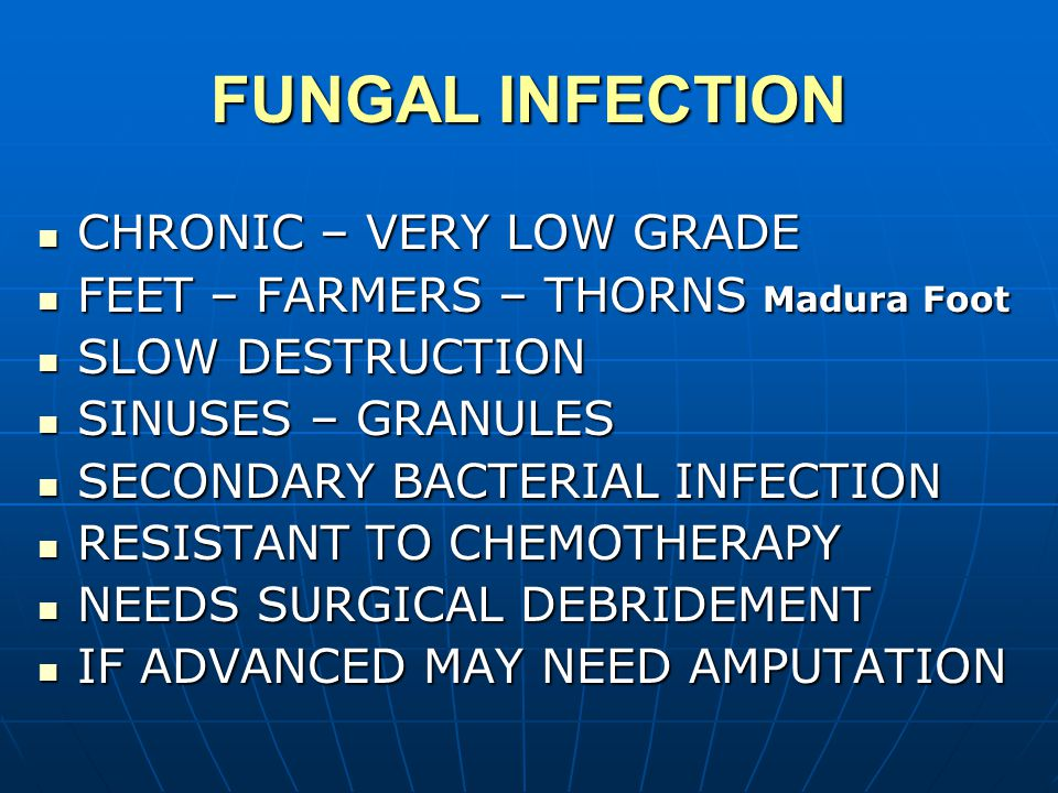 FUNGAL INFECTION CHRONIC – VERY LOW GRADE CHRONIC – VERY LOW GRADE FEET – FARMERS – THORNS Madura Foot FEET – FARMERS – THORNS Madura Foot SLOW DESTRUCTION SLOW DESTRUCTION SINUSES – GRANULES SINUSES – GRANULES SECONDARY BACTERIAL INFECTION SECONDARY BACTERIAL INFECTION RESISTANT TO CHEMOTHERAPY RESISTANT TO CHEMOTHERAPY NEEDS SURGICAL DEBRIDEMENT NEEDS SURGICAL DEBRIDEMENT IF ADVANCED MAY NEED AMPUTATION IF ADVANCED MAY NEED AMPUTATION