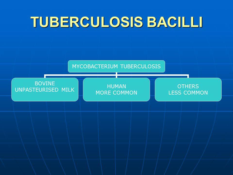 PARAPLEGIA IN TB SPINE CAUSED BY EXTRADURAL PRESSURE GRANULATION TISSUE GRANULATION TISSUE PRESSURE OF ABSCESS & CASEATON PRESSURE OF ABSCESS & CASEATON SEQUESTRUM SEQUESTRUM PATHOLOGICAL FRACTURE/DISLOC.