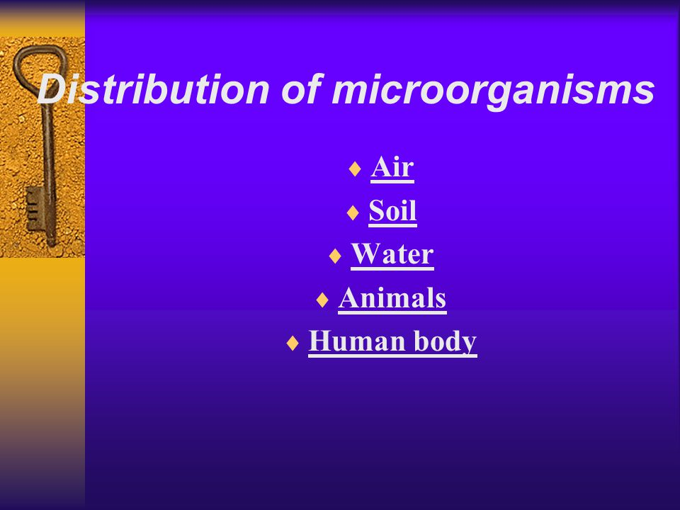 Distribution of microorganisms  Air  Soil  Water  Animals  Human body