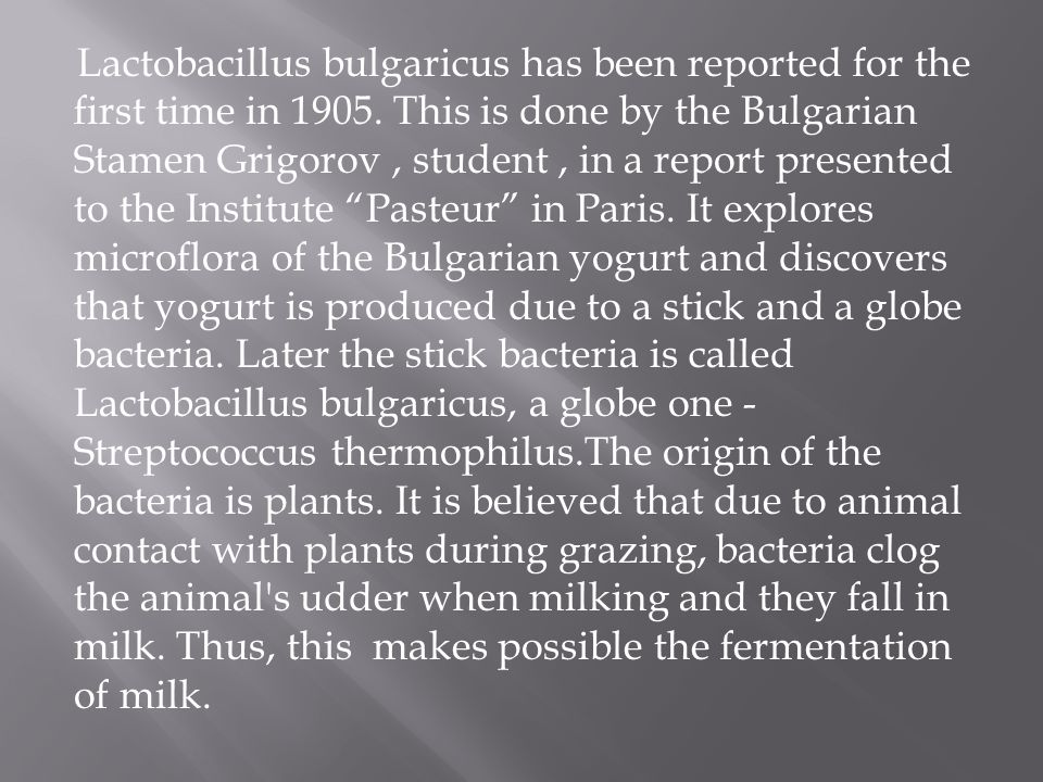 Lactobacillus bulgaricus has been reported for the first time in 1905.