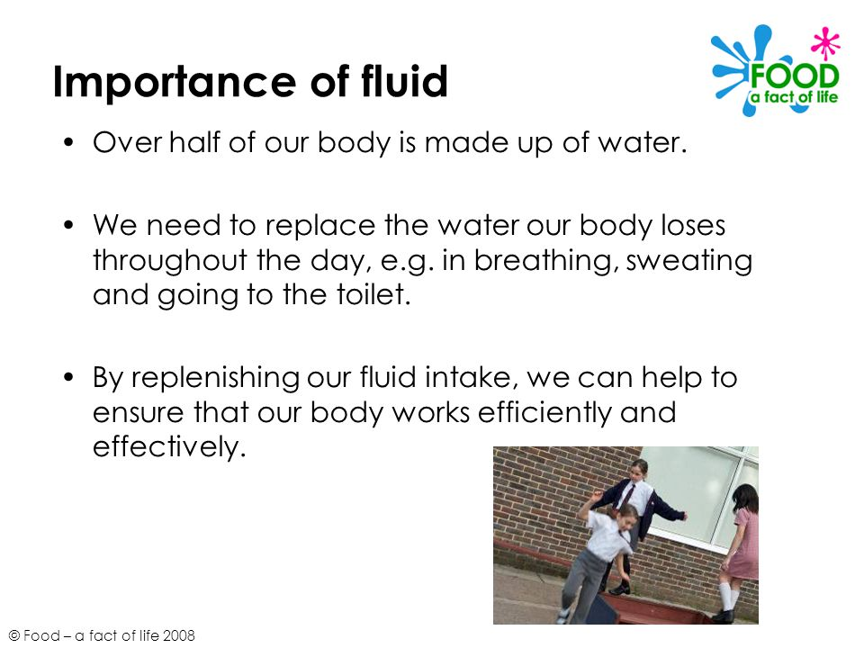 © Food – a fact of life 2008 Importance of fluid Over half of our body is made up of water. We need to replace the water our body loses throughout the