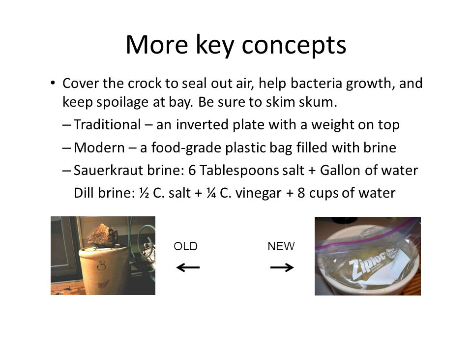 More key concepts Cover the crock to seal out air, help bacteria growth, and keep spoilage at bay.