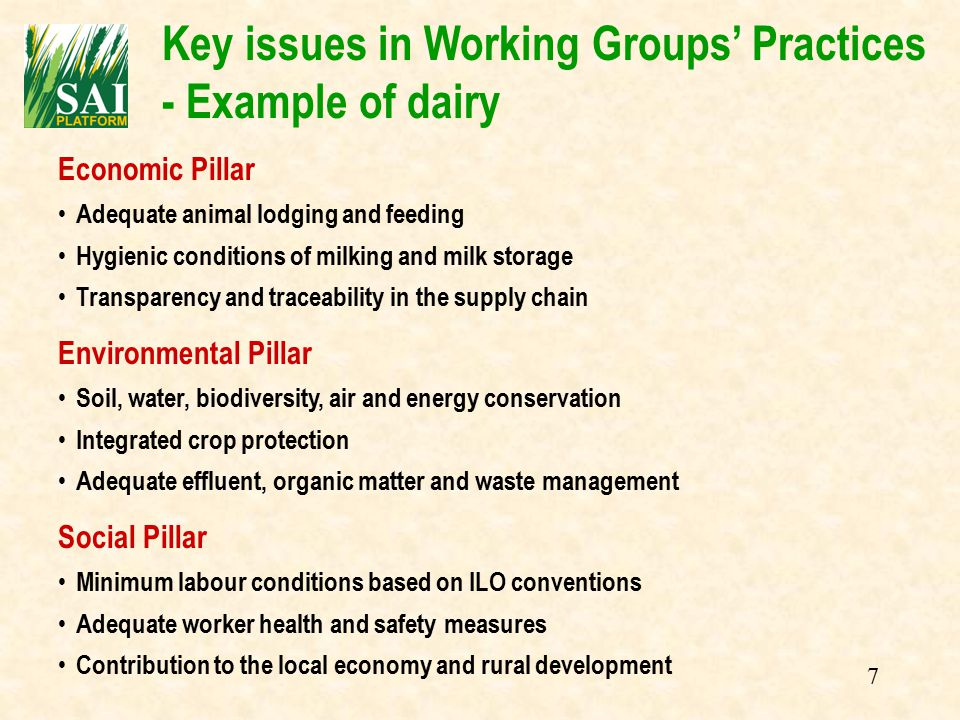 7 Key issues in Working Groups' Practices - Example of dairy Economic Pillar Adequate animal lodging and feeding Hygienic conditions of milking and milk storage Transparency and traceability in the supply chain Environmental Pillar Soil, water, biodiversity, air and energy conservation Integrated crop protection Adequate effluent, organic matter and waste management Social Pillar Minimum labour conditions based on ILO conventions Adequate worker health and safety measures Contribution to the local economy and rural development