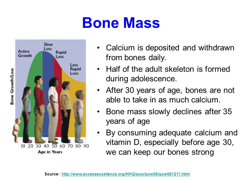 Bone Mass Calcium is deposited and withdrawn from bones daily.