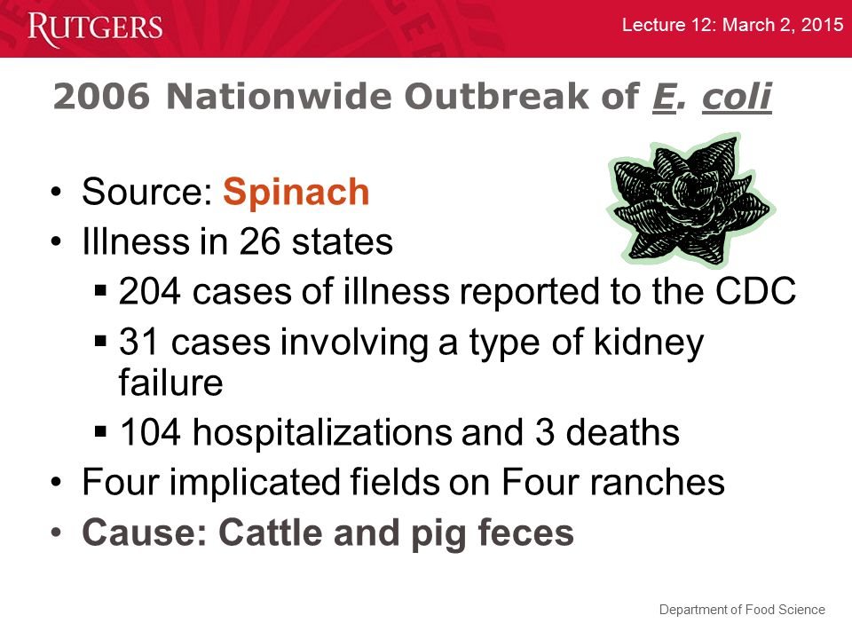 Department of Food Science Lecture 12: March 2, 2015 2006 Nationwide Outbreak of E. coli Source: Spinach Illness in 26 states  204 cases of illness r