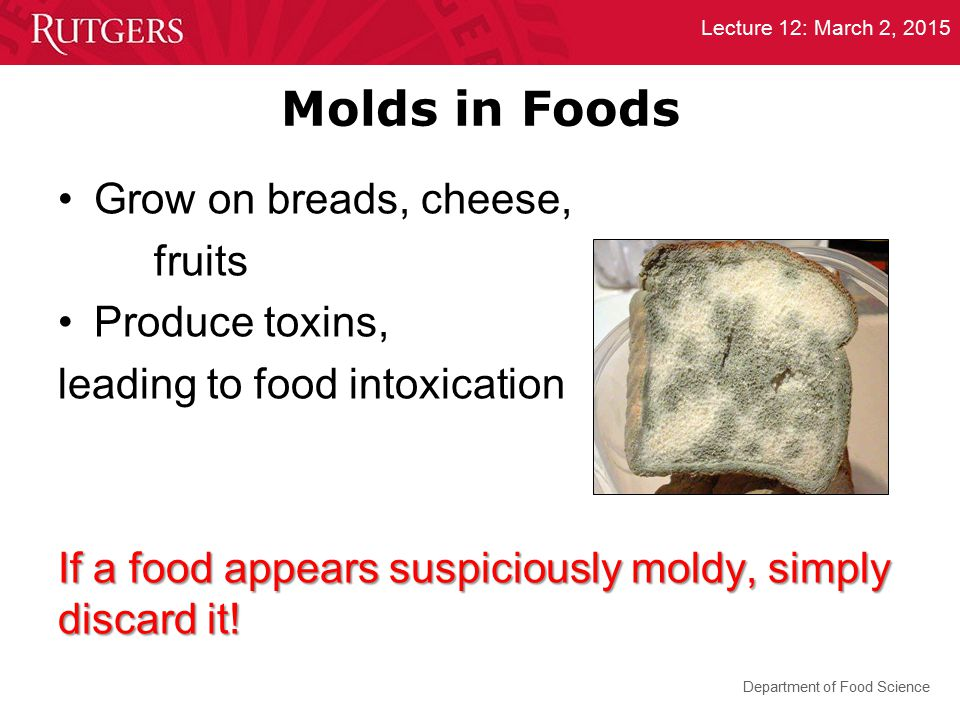 Department of Food Science Lecture 12: March 2, 2015 Molds in Foods Grow on breads, cheese, fruits Produce toxins, leading to food intoxication If a f