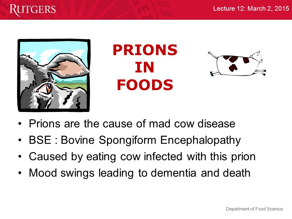 Department of Food Science Lecture 12: March 2, 2015 PRIONS IN FOODS Prions are the cause of mad cow disease BSE : Bovine Spongiform Encephalopathy Ca